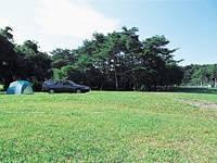 三河高原キャンプ村・写真