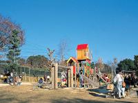 大池公園・写真