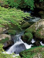 王滝渓谷・写真