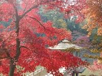 岡崎市東公園・写真