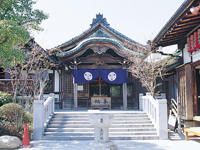 玉照姫 泉増院