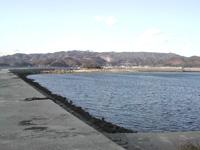西浦・松島漁場 潮干狩り・写真