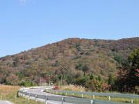 茶臼山高原道路・写真
