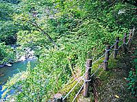 堂ヶ島温泉・写真