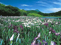 神楽女湖・写真