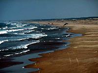 日川浜海岸・写真