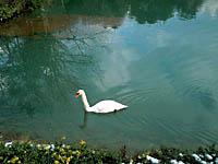 三段池・写真