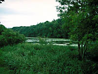 中山池・写真