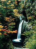 大釜の滝・写真