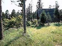 龍城院キャンプ場