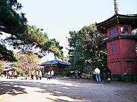 哲学堂公園・写真