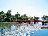 天王川公園・写真