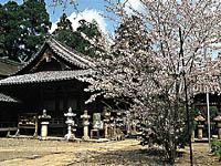 野上八幡宮・写真