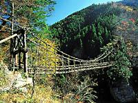 奥祖谷二重かずら橋・写真