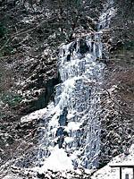 白猪の滝・写真