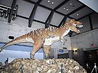 佐川地質館・写真