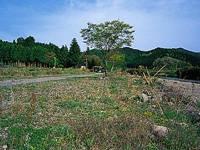 天満宮前キャンプ場