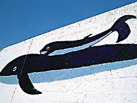入野漁港岸壁の壁画・写真