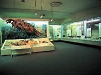 山形県立博物館・写真