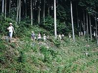 萩の平・写真