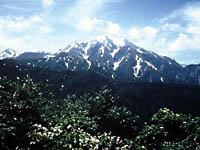 越後駒ヶ岳・写真