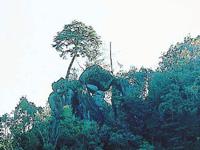 永迫の奇岩群・写真