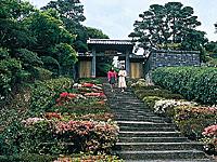 内藤記念館・写真