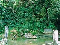 雁股の泉・写真