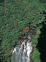 花房滝・写真