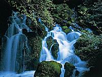 御手洗の滝・写真
