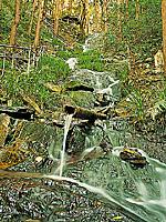 鳴滝・写真