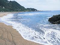 布良海岸・写真