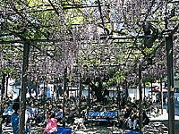 竹鼻別院・写真