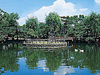 安城公園の桜・写真