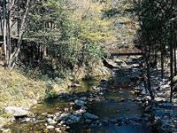 神越渓谷ます釣り場・写真