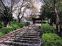 大岡寺・写真