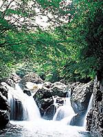 福知渓谷・写真