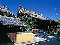 浄泉寺・写真