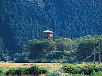 バードウオッチタワー
