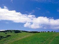 山頭草原・写真