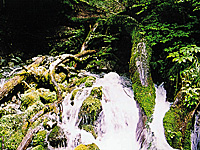 球磨川水源