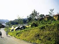 奥阿蘇キャンプ場・写真