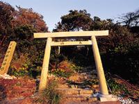 伊射波神社・写真