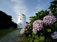 菅島灯台・写真