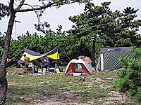 慶野松原一般キャンプ場・写真