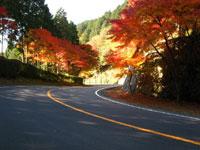 比叡山(滋賀県)