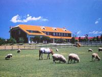 滋賀県畜産技術振興センター・写真