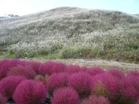 箱館山・写真
