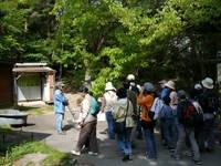 栗東自然観察の森・写真