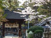 立木神社・写真